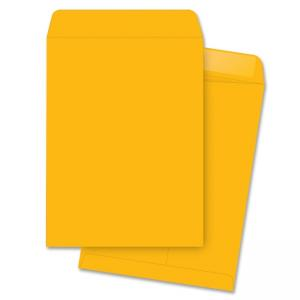 Business Source Open End Document Mailer - 250 / Box - Kraft