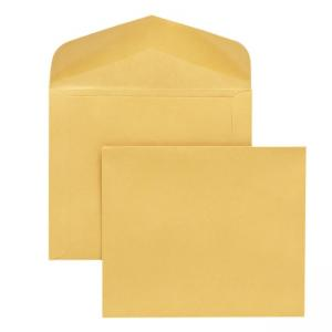 Quality Park Extra Heavy-Duty Document Envelope 100 / Box - Cameo