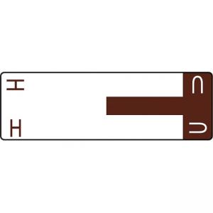 Smead AlphaZ NCC Color Coded Name Labels - Dark Brown